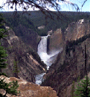 Lower Falls at Canyon - Yellowstone River and Grand Canyon of the Yellowstone - Yellowstone National Park